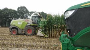 Prestation ensilage maïs Loire-Atlantique