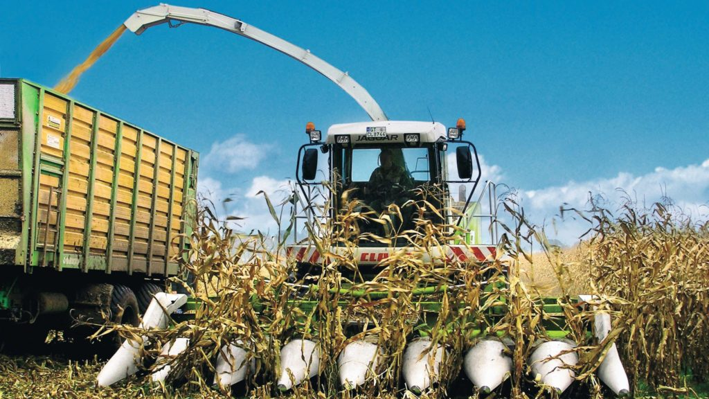 Prestation ensilage maïs épi