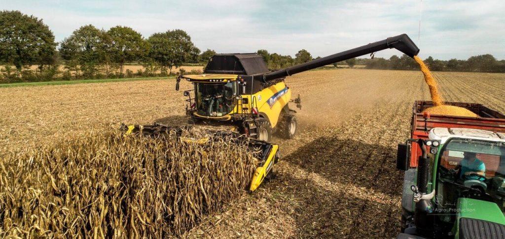 Prestation de battage maïs grain
